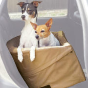 K and H bucket booster seat with 2 dogs2
