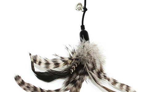 Katt Kube Feather Toy