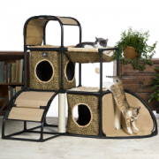 Prevue Townhome with cat jumping