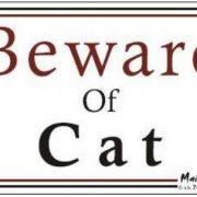 Magnet Beware of Cat2