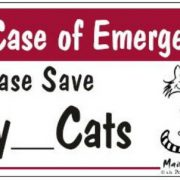 Magnet in case of emergency please save my Cats