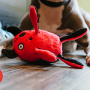 Play Momos Monster with dog red2