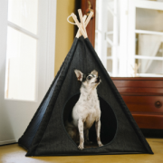TEE PEE with Dog 32